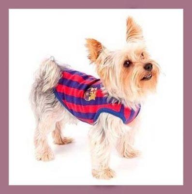 camisetas para perros de futbol