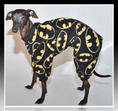 como hacer pijamas para perros paso a paso