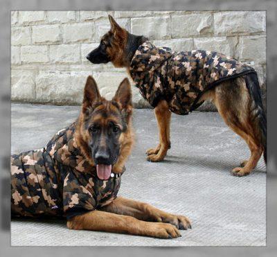 como hacer ropa para perros facil