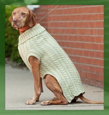 como hacer ropa para perros grandes