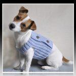 Ropa para perros de raza pequeña