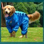 Impermeables para perros grandes y medianos
