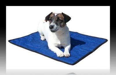 mantas para perros moldes