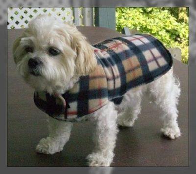 moldes de ropa para perros pequeños