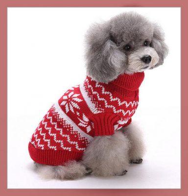 moldes para ropa de perros gratis
