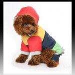 Ropa de invierno para mascotas escoge tu modelo ahora