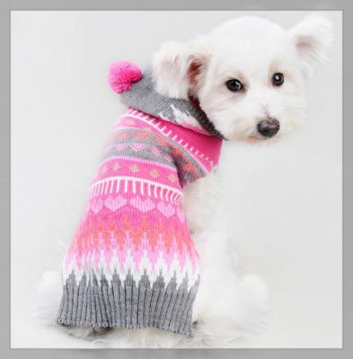 ropa para cachorras