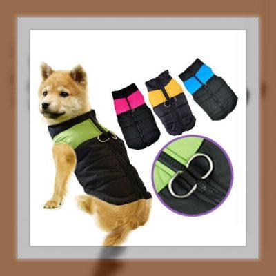 ropa para cachorrosmachos