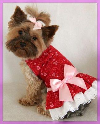 vestidos de mascotas