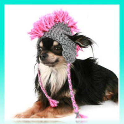 moda canina patrones