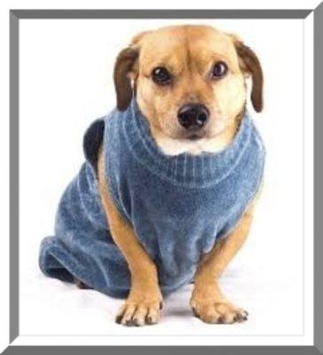 sweaters para perros tejidos