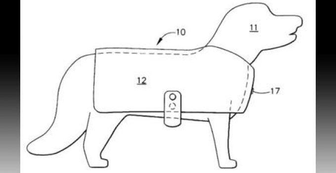 vestuario para perros modelos y precios