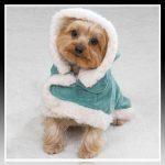 Imagenes de ropa para perros shih tzu