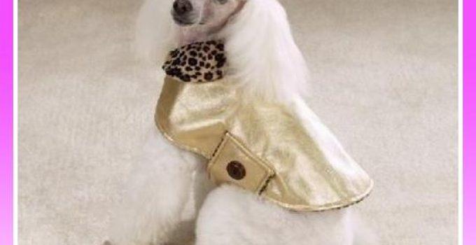 chaqueta animal print para poodle