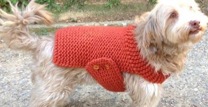 chompa de lana para perros