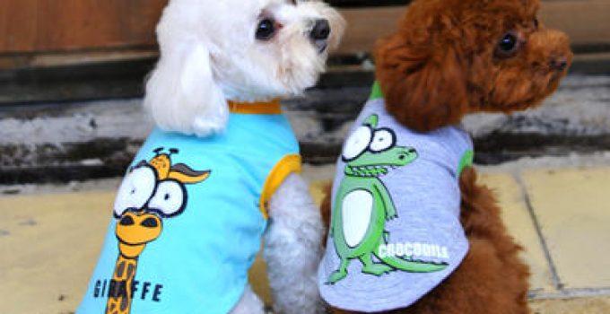 imagenes de ropa para perros