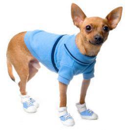 Ropa para Chihuahuas azul