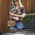 Paris Hilton y sus chihuahuas