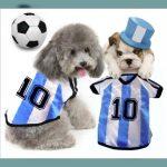 Camisetas para perros pequeños muy bonitas y atractivas