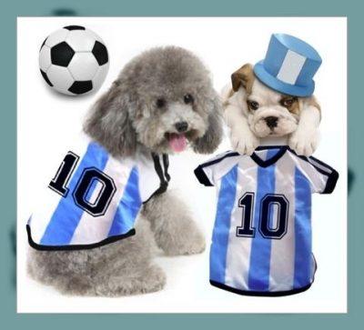 camisetas para perros personalizadas