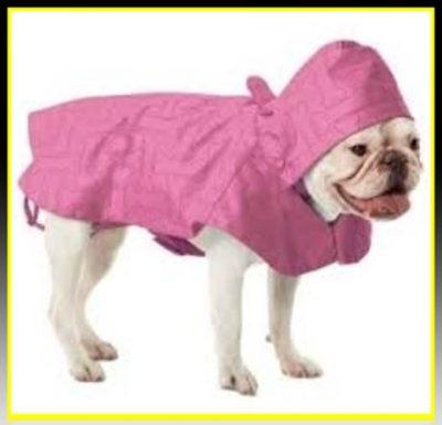 capas para perros pequeños