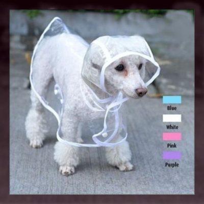 capas tejidas para mascotas