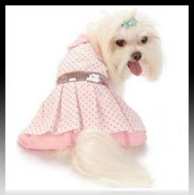 descargar moldes ropa para perros gratis