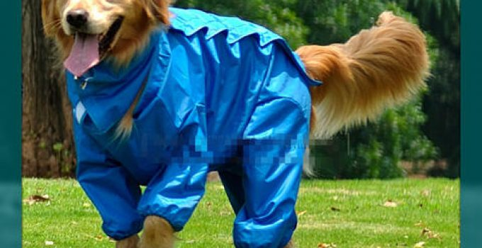 impermeable para perro patrones