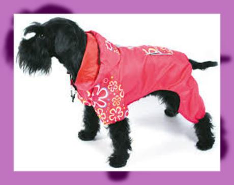 mejor venta mejor sitio web producto caliente Impermeables para perros grandes y medianos   Imágenes de ...