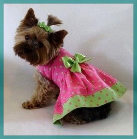 Vestidos Para Mascotas Hembras Hermosos Modelos Imágenes