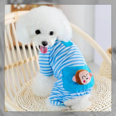 moldesparahacerropa para perros
