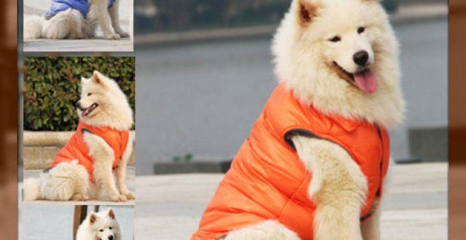 ropa para perros grandes barata