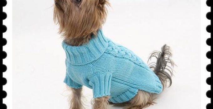 ropa tejida para perros paso a paso