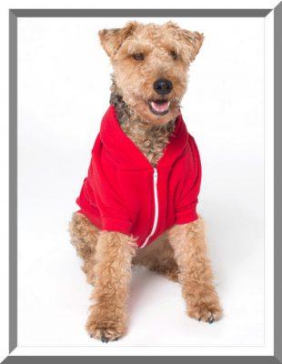 sweaters para perros pequeños