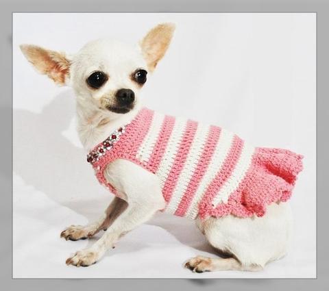 vestidos de perritas chihuahua   imágenes de ropa para perros