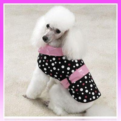 chaqueta para poodle