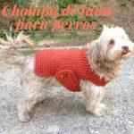 Chompas de lana para perros