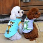 Donde comprar chalecos para perros pequeños