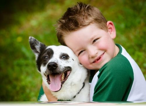 cuidar a un perro
