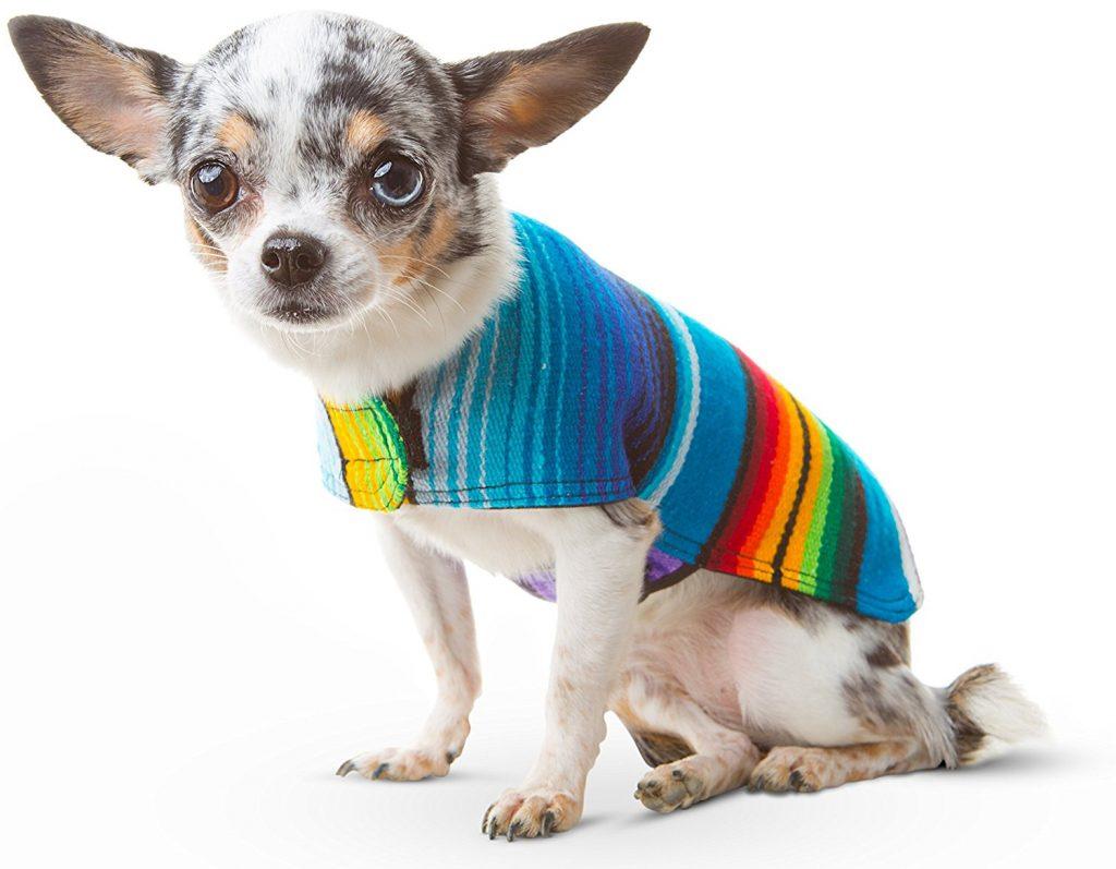 Ropa para Chihuahuas colorido